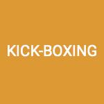 section kick boxing